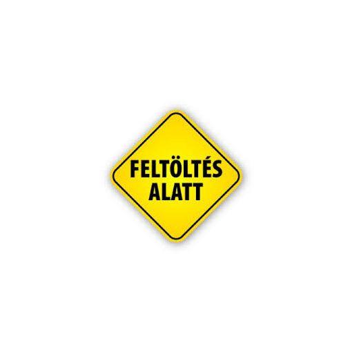 N16017 Mágneses behajtóhegy 17mm-es laptávval